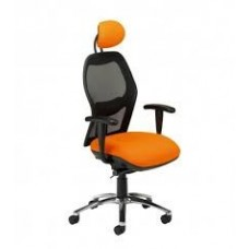 Summit Eeso High back Task chair with headrest